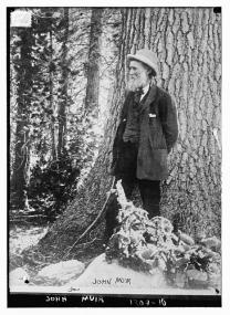 Image Credit: John Muir. Photographer unknown. Library of Congress. Link Here.